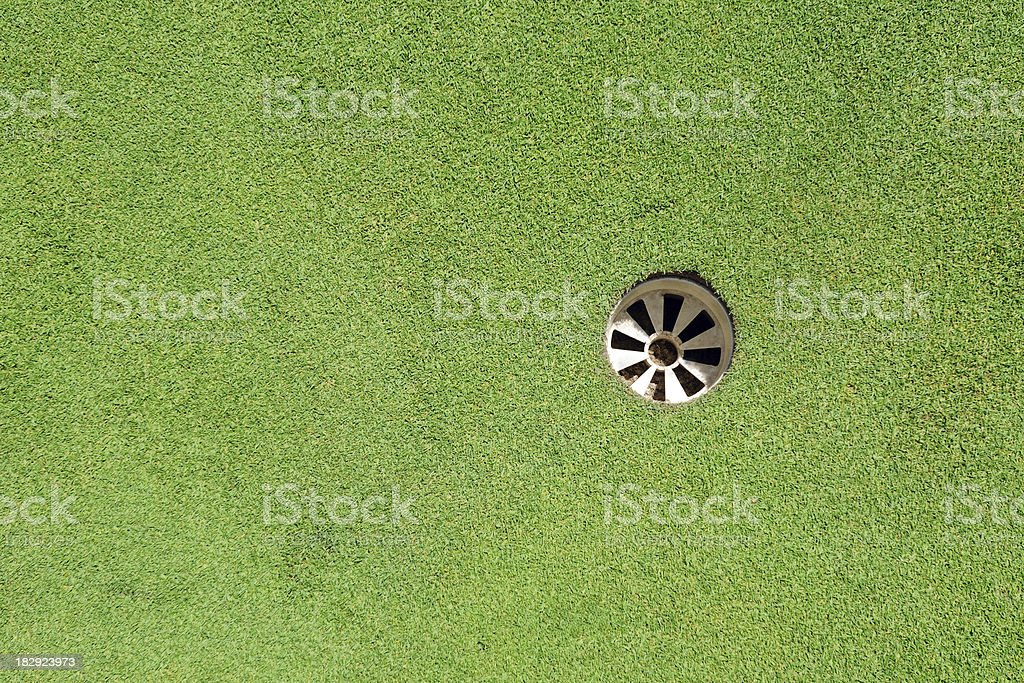 Golf Green and Hole - XLarge stock photo