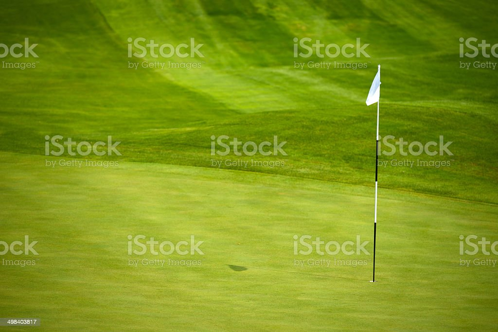 Golf Green Background stock photo