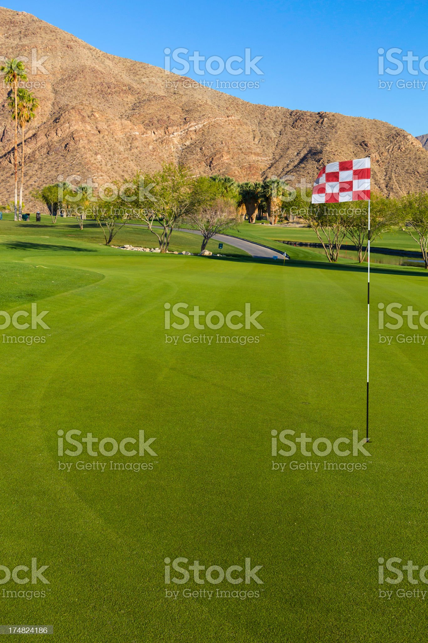 Golf green in Palm Springs (P) royalty-free stock photo