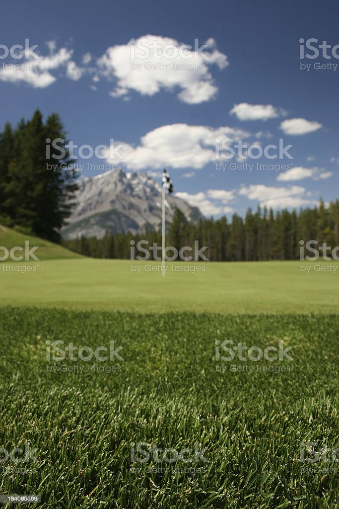 Golf Green Soft Focus royalty-free stock photo