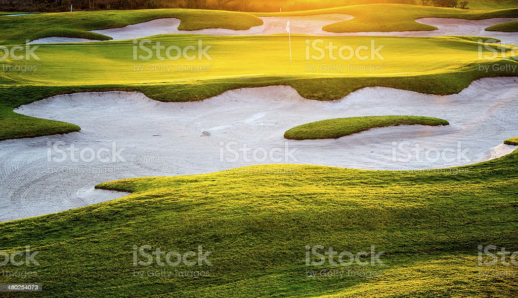 Golf Green Sunset stock photo