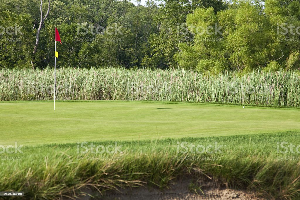 Golf Green with Flag royalty-free stock photo