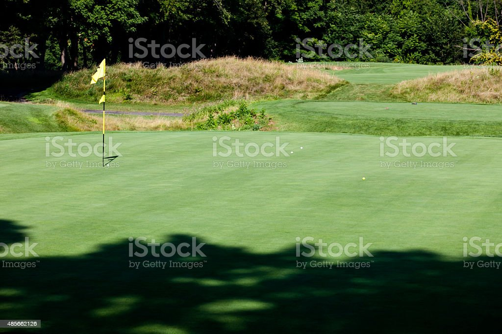 Golf Green with Flag Stick and four balls on green. Image shot with...