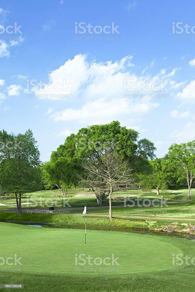 Golf Hole royalty-free stock photo