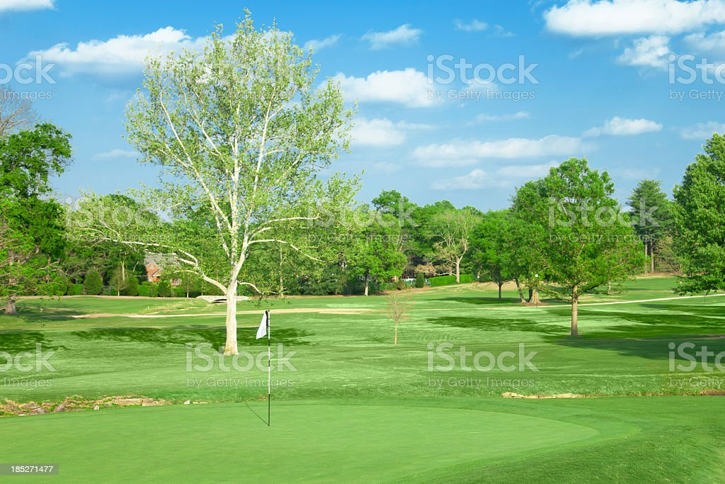 Golf Hole royalty-free stock photo