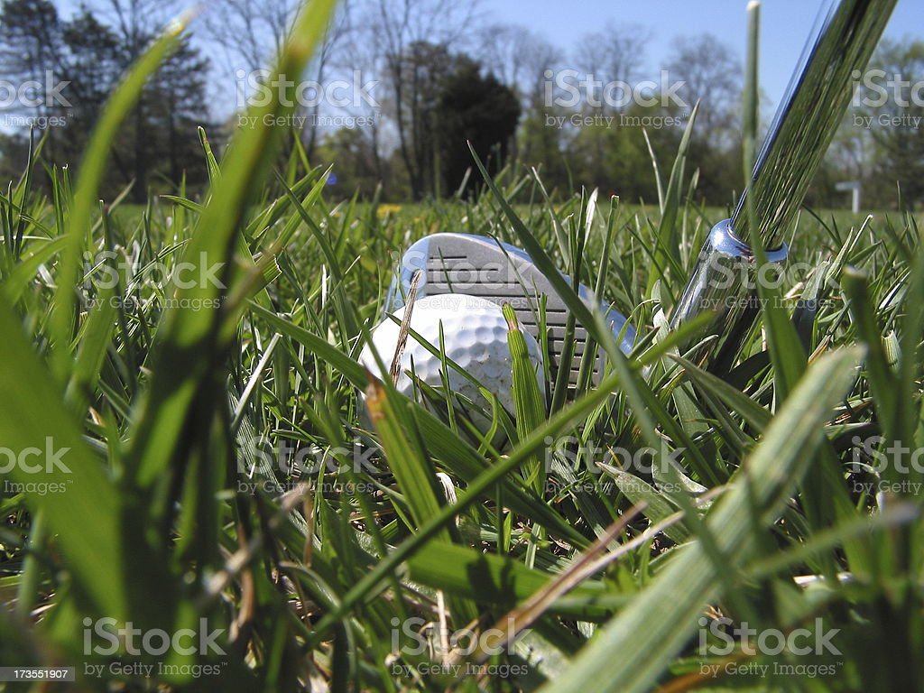 Golf - In the rough royalty-free stock photo