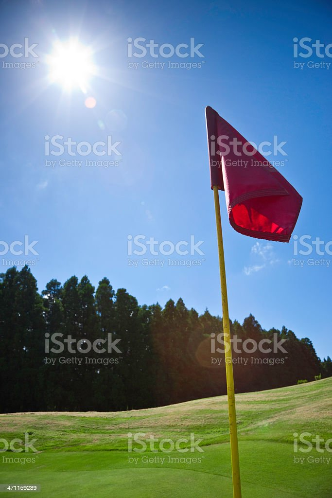 Golf in the Sunlight royalty-free stock photo