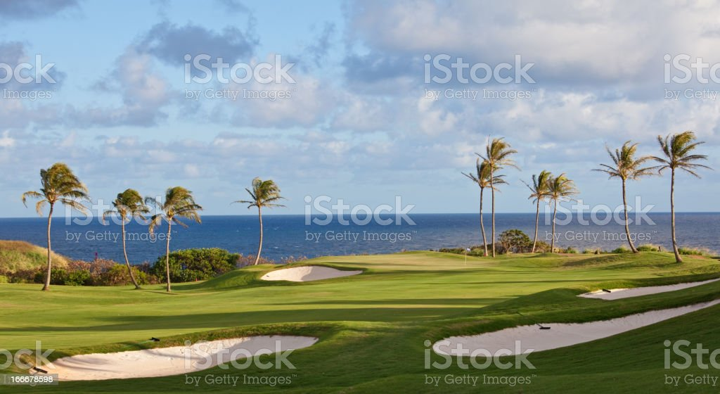 Golf in the Tropics stock photo