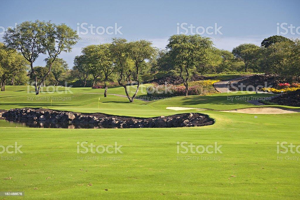 Golf Landscape royalty-free stock photo