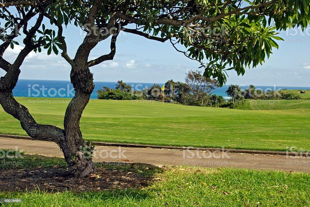 Golf Scene Overlooking the Ocean royalty-free stock photo