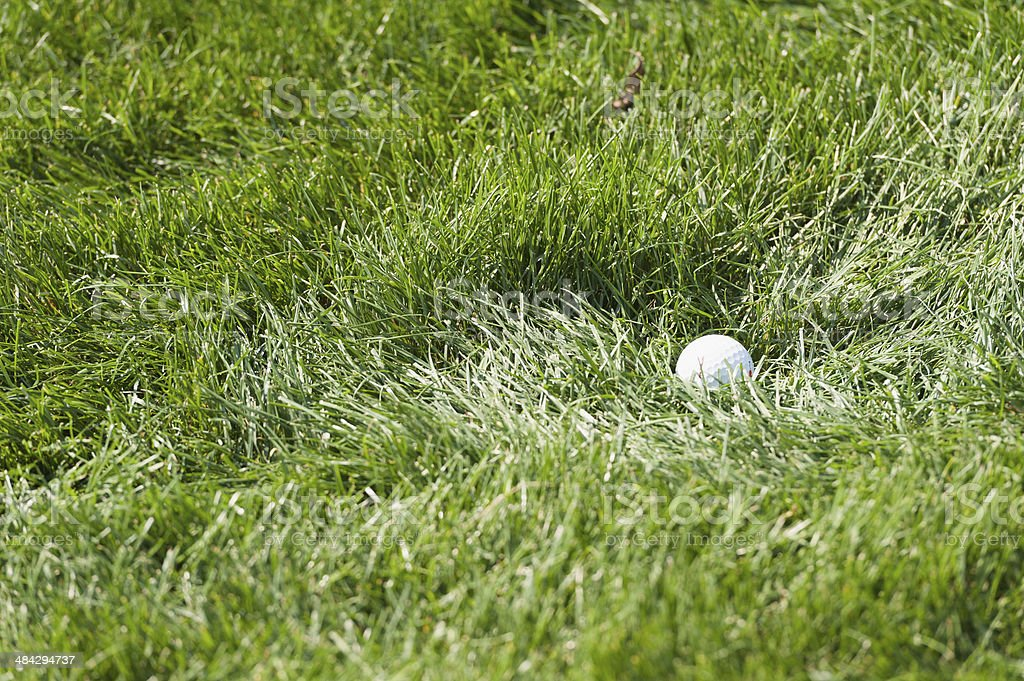 golfball in the rough at a golf course stock photo