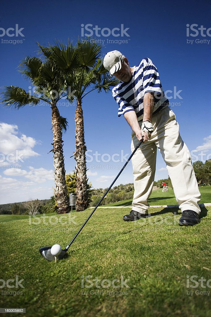 Golfer Lining Up royalty-free stock photo
