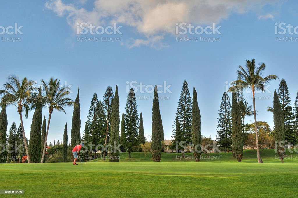 Golfer on Upcountry course, Maui stock photo