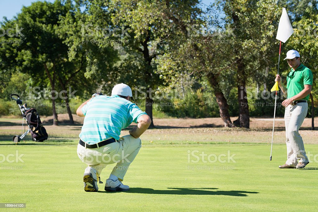 Golfer reading the green royalty-free stock photo