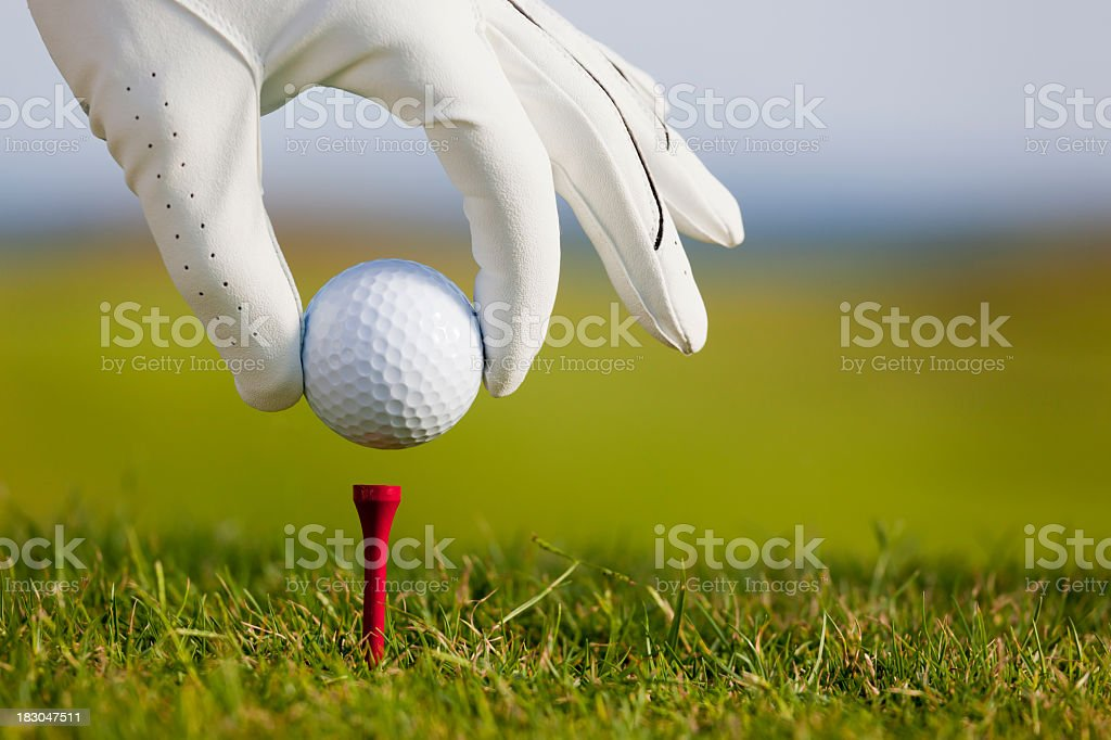 Golfer ready to tee off on the golf course stock photo