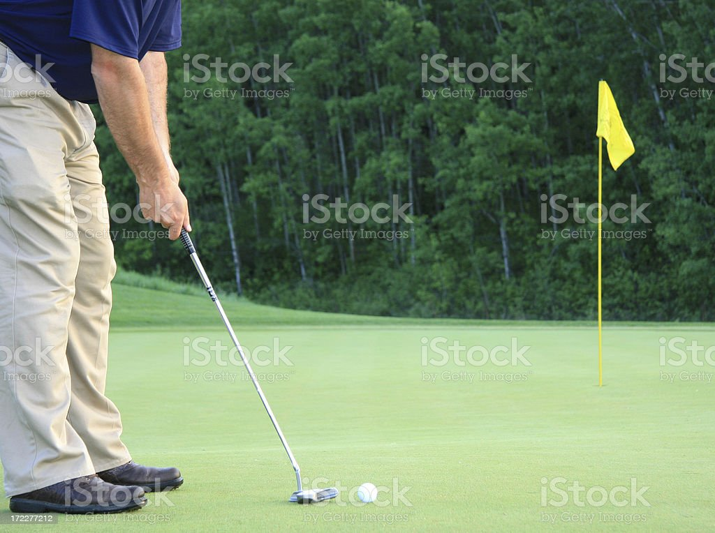 golfer taking a putt on the green royalty-free stock photo