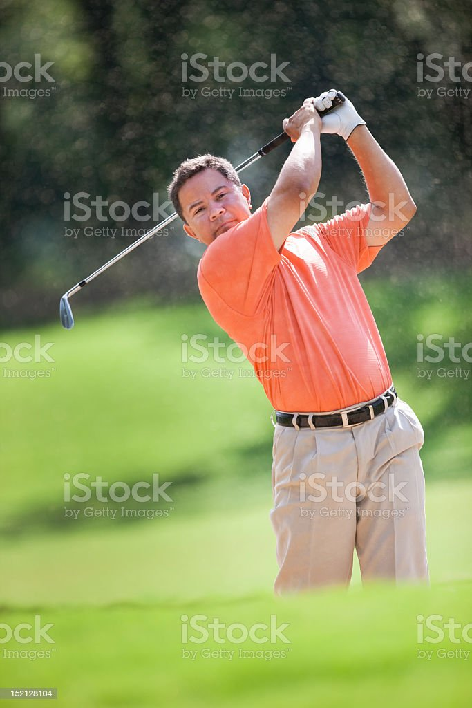 Golfer With Club In The Air royalty-free stock photo