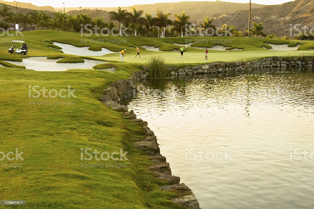 Golfers in the green royalty-free stock photo