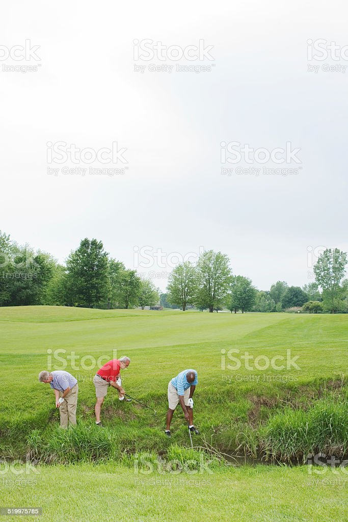 Golfers searching for lost balls in bushes stock photo