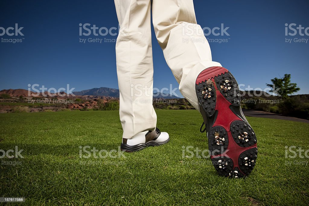 Golfer's Shoe stock photo