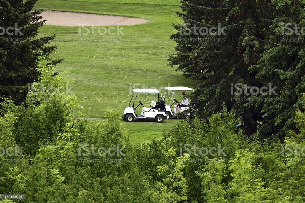 Golfing 2 royalty-free stock photo