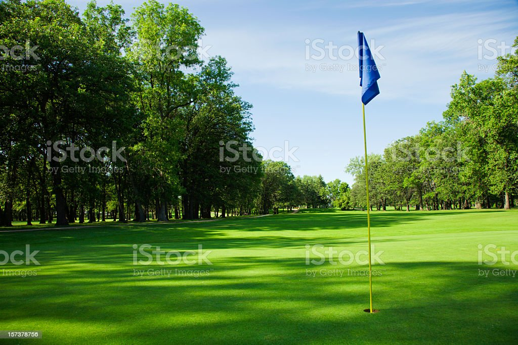 Golfing green with blue flag in the hole stock photo