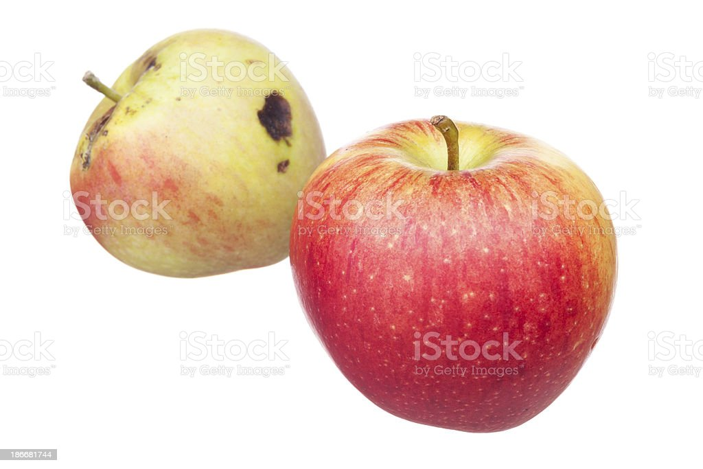 Good apple metaphor stock photo
