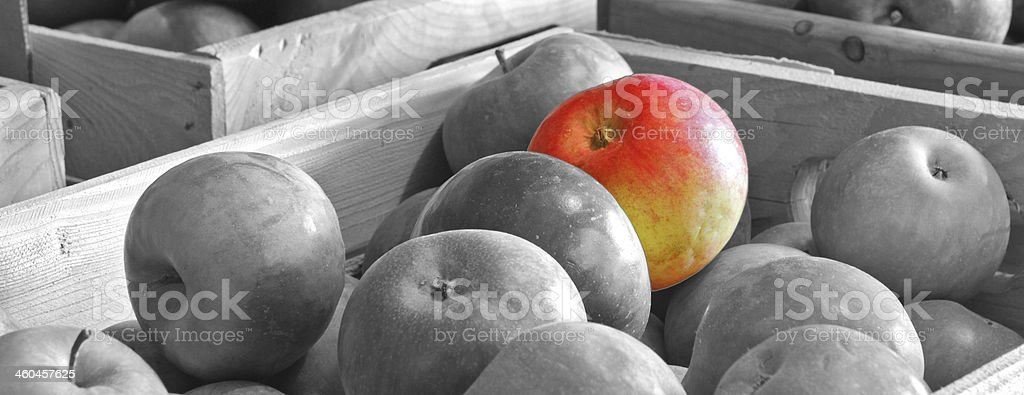 Good apple stock photo