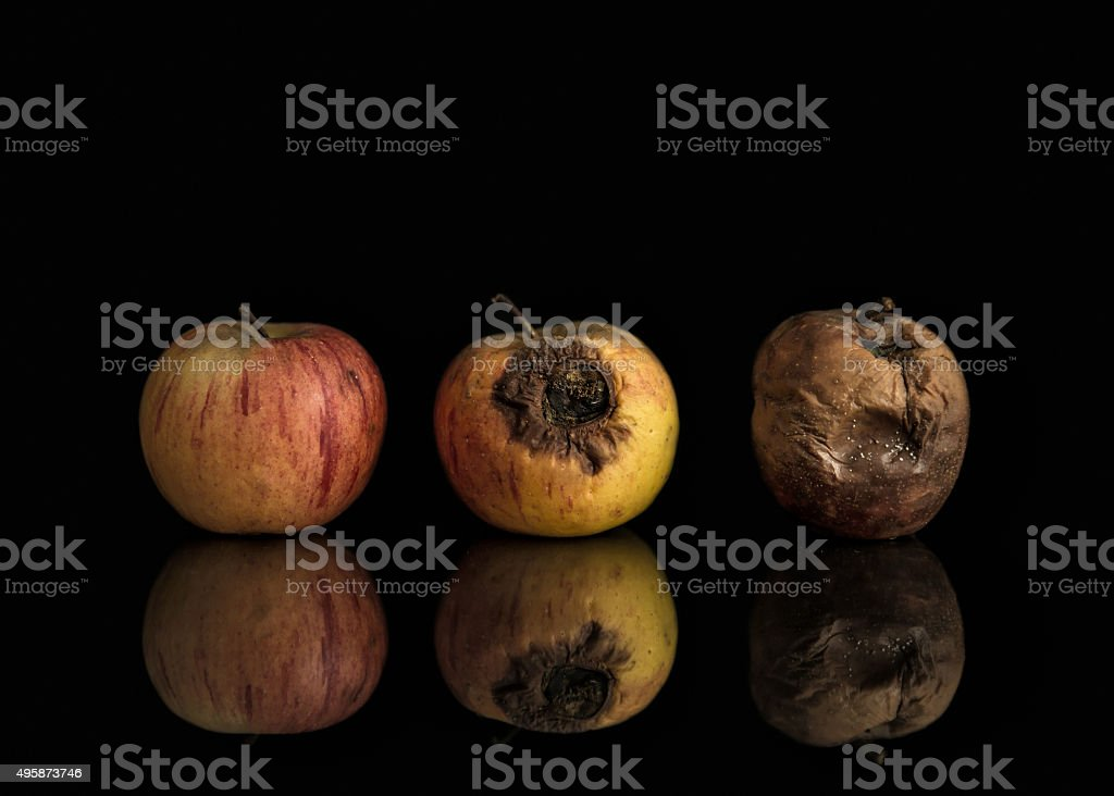 Good, bad and rotten apples stock photo