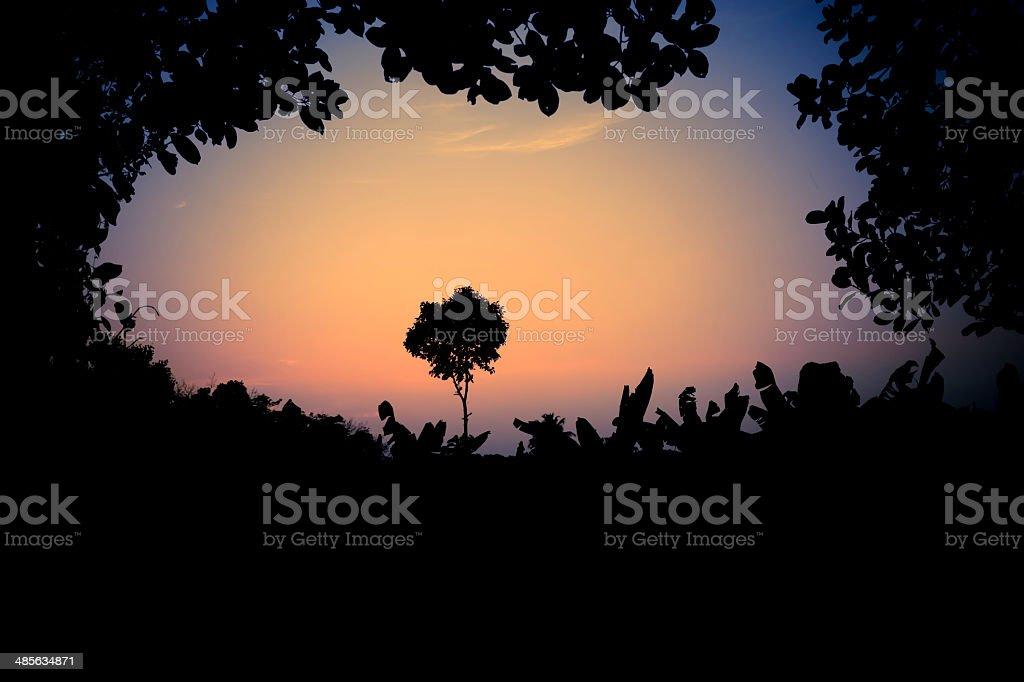 Good Evening stock photo