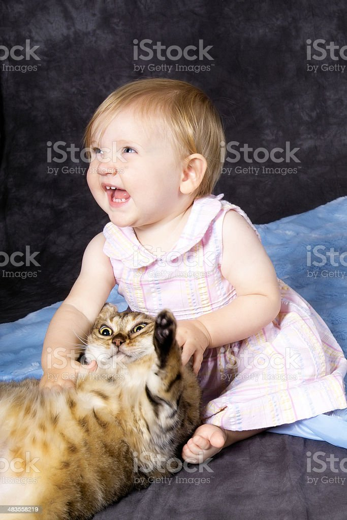 Good Kitty! royalty-free stock photo