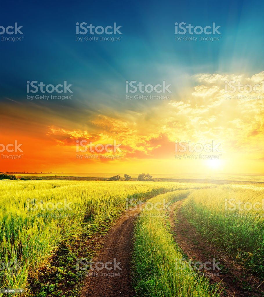 good sunset and road in green fields stock photo