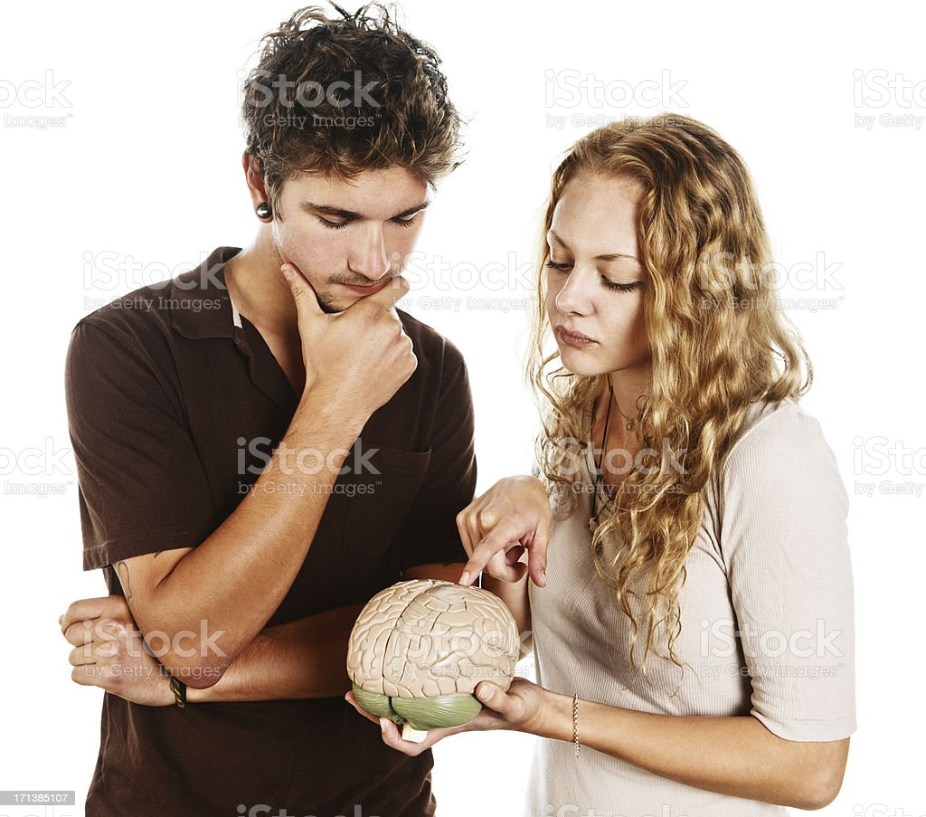 Good-looking young couple study human brain model together stock photo