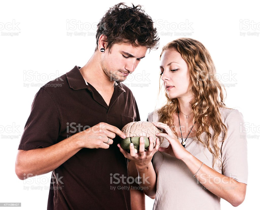 Good-looking young couple study model of human brain intently stock photo