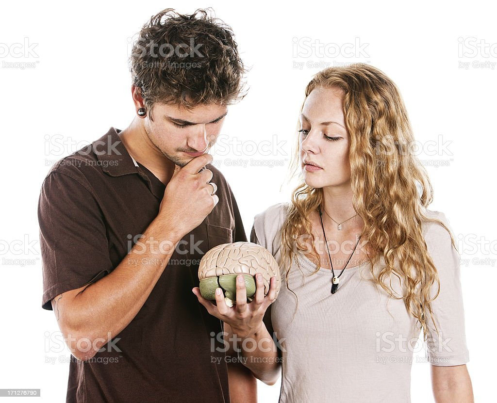 Good-looking young couple studying model brain thoughtfully stock photo