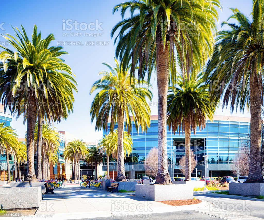 Google Mountain View California campus with palm trees stock photo