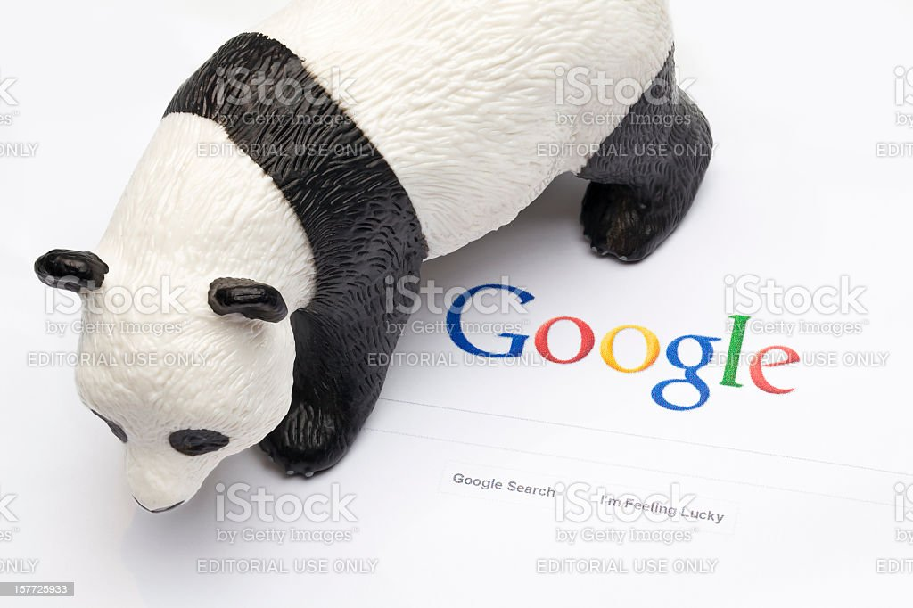 Google Panda and Penguin stock photo