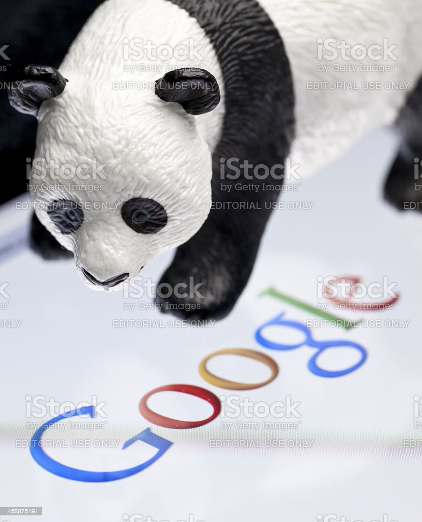 Google Panda stock photo