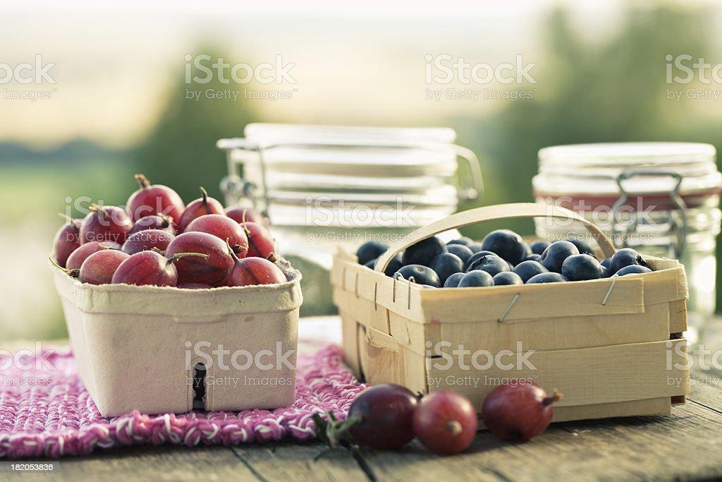 goose berries and blackberries making preserves royalty-free stock photo