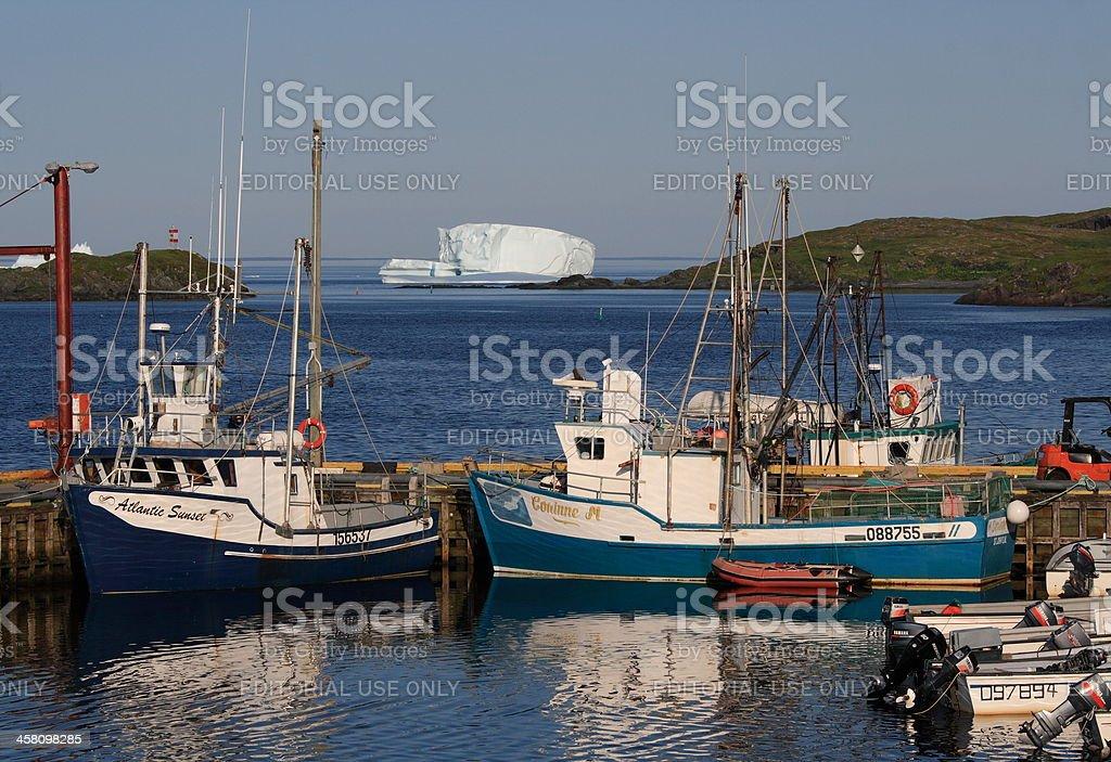 Goose Cove Harbour stock photo