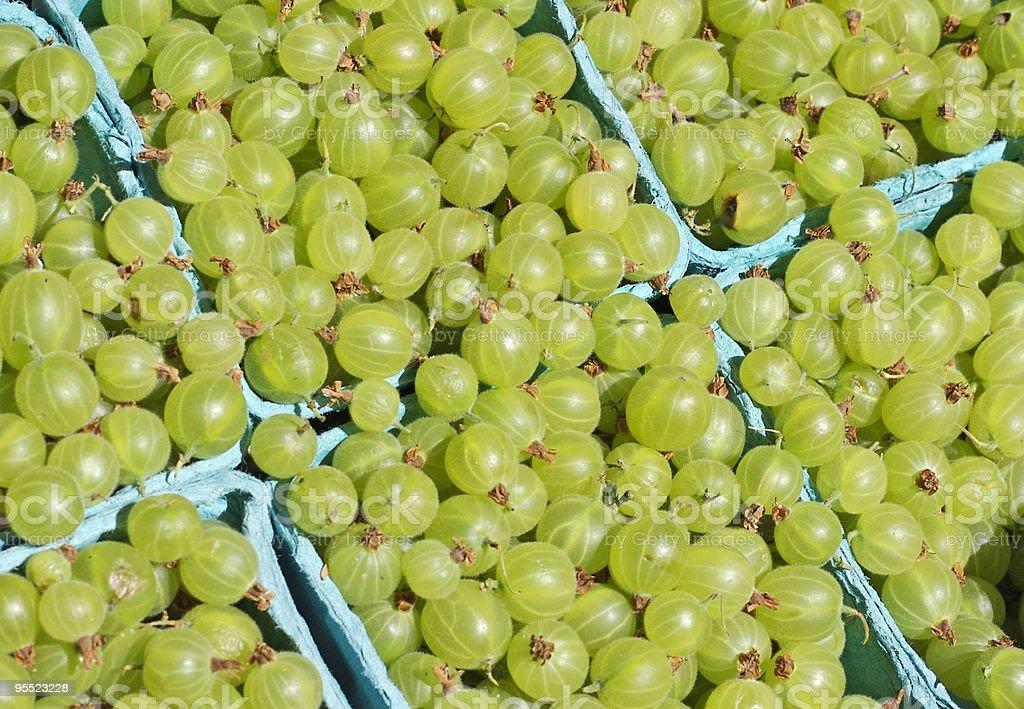 Gooseberries  at the Farmer's Market royalty-free stock photo