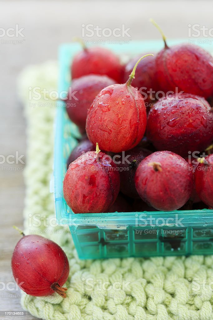 Gooseberries royalty-free stock photo
