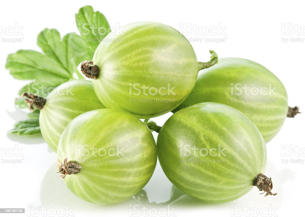 Gooseberries with leaves royalty-free stock photo