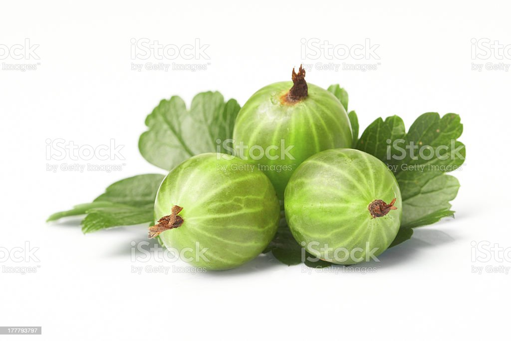 gooseberry,  among green leaves royalty-free stock photo
