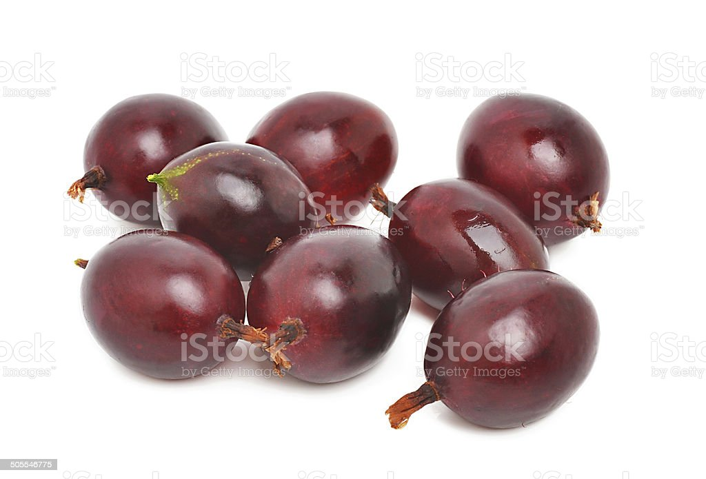 Gooseberry royalty-free stock photo