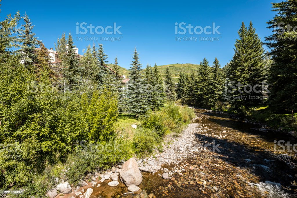 Gore creek in Vail, Colorado with pine tree forest stock photo