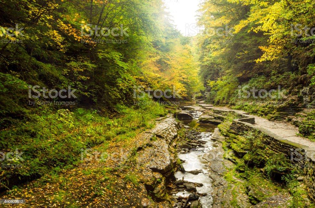 Gorge in Autumn stock photo