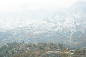 gorgeous farm fields, rice paddy terraces covered in snow