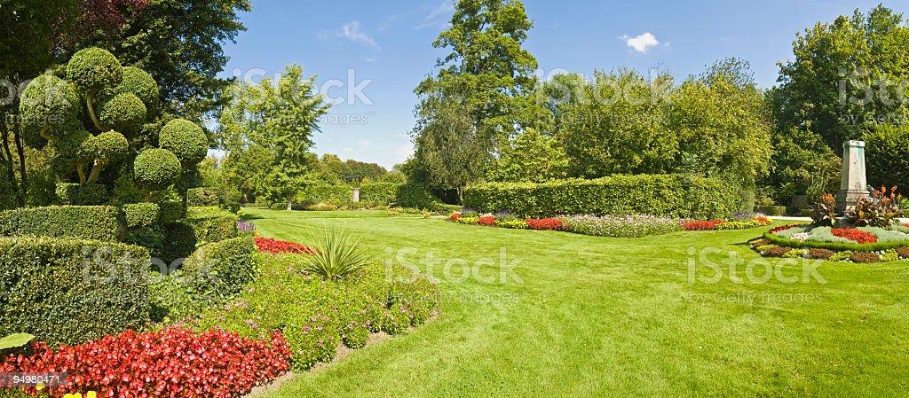 Gorgeous garden green grass stock photo