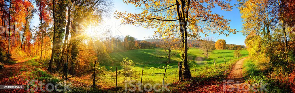 Gorgeous landscape panorama showing a meadow and a path leading into...
